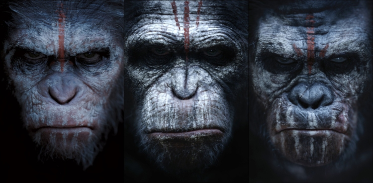 "Imagen promocional de ""Dawn of the Planet of the Apes""."