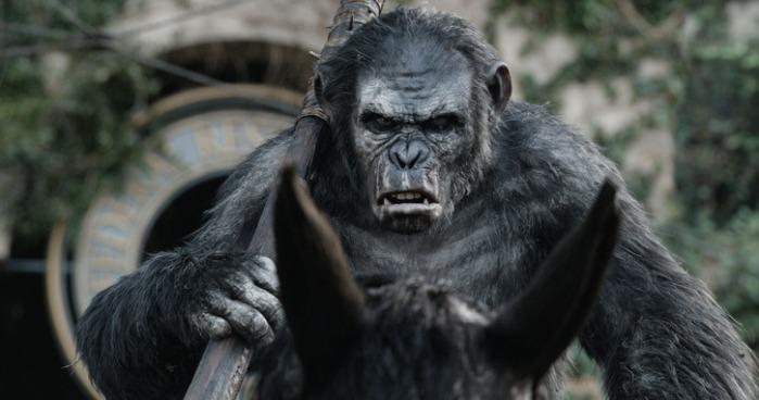 """Toby Kebbell hace las gesticulaciones y voz de Koba en """"Dawn of the Planet of the Apes""""."""
